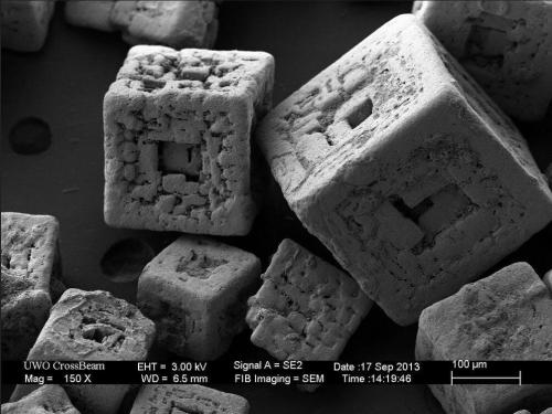 Salt grains under an electron microscope